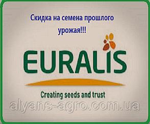 Амис СЛ Евралис (под Евролайтинг) семена подсолнечника