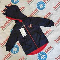 Детские весенние куртки для мальчиков оптом  SEAGULL, фото 1