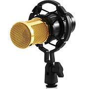 Микрофон студийный конденсаторный Music D.J. M-800