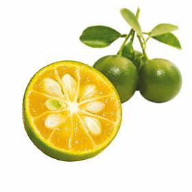 Заморожене фруктове пюре Каламансі Les vergers Boiron
