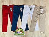 Бордовые брюки Polo для мальчика, фото 4