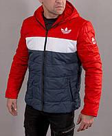 Мужская спортивная куртка adidas с капюшоном на синтепоне