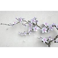 Фотообои Ветка с цветами сакуры 3D (10454)