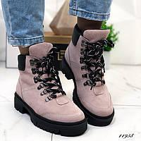 Женские ботинки пудровые на шнуровке натуральная замша зимние