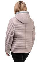 Женская демисезонная куртка  «Дора», р-ры 48-54, фото 3