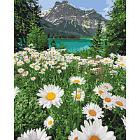 Картины по номерам Красота природы / пленка 40*50   арт. КНО2819