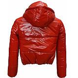 Підліткова червона куртка лакова, розміри 38-48, вик.червоний, фото 4