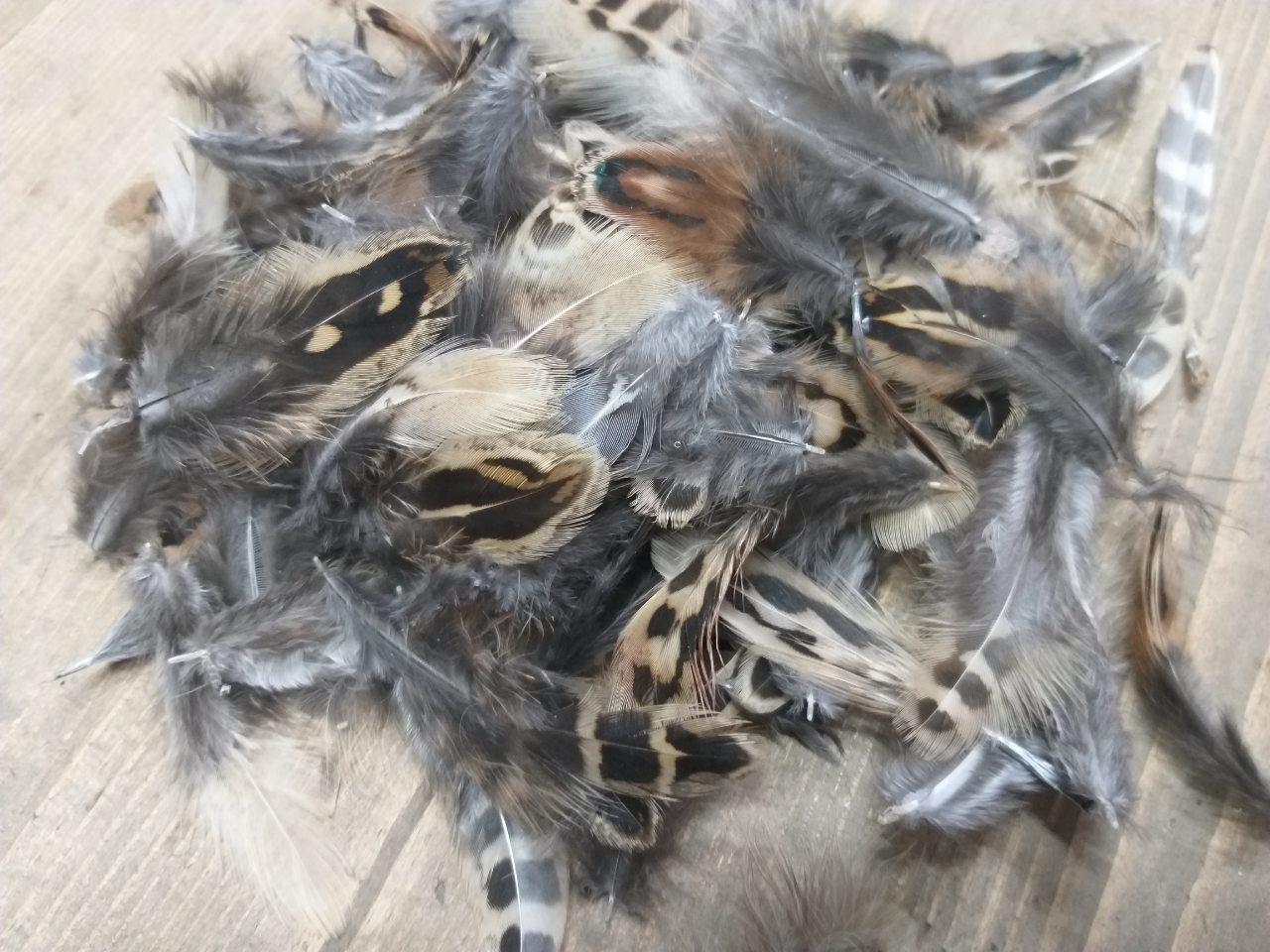 Очаровательные перышки фазана для натурального декора, 150 шт. в упаковке, 35 грн.