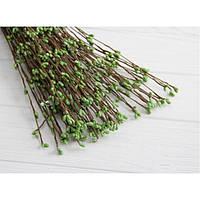 Веточки ивы ,    свежая зелень                              100 шт