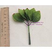 Листья МЕЛКИЕ  , зеленые                            144 шт