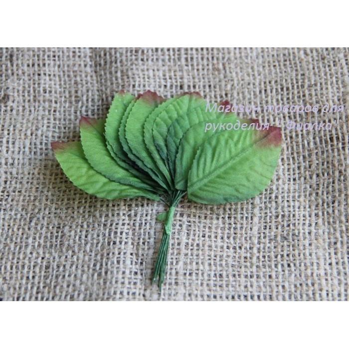Листья КРУПНЫЕ  , зеленые                            144 шт