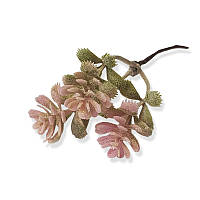Декоративная веточка мини - Седум розовый, длина 13 см, 1 шт