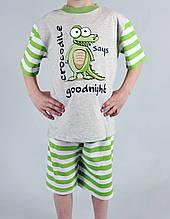 Пижама для мальчика Natural Club 1054 104 см Серый