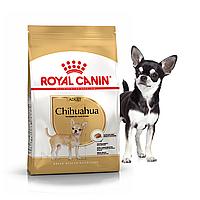 Сухой корм Royal Canin Chihuahua Adult 1,5кг
