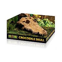 Декорация Exo Terra Crocodile Skull