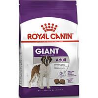 Корм сухой для собак старше 18/24 мес Royal Canin Giant Adult 15 кг.