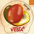 Магнитик Vesta