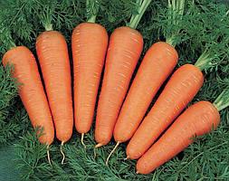 Насіння моркви Канада F1 (100 000шт) Bejo (1,8-2,0 мм)