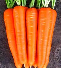 Насіння моркви Лагуна F1 (25 000шт) Nunhems (1,6-1,8мм)