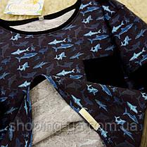 Реглан для мальчика акулы Five Stars KX0285-128p, фото 3