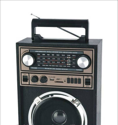 Радио Акустика Колонка Радиоприемник KN-71REC-R Колонка акустическая USB/МР3 Портативная акустика , фото 2