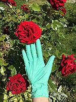 Перчатки нитриловые Салатовые, фото 1