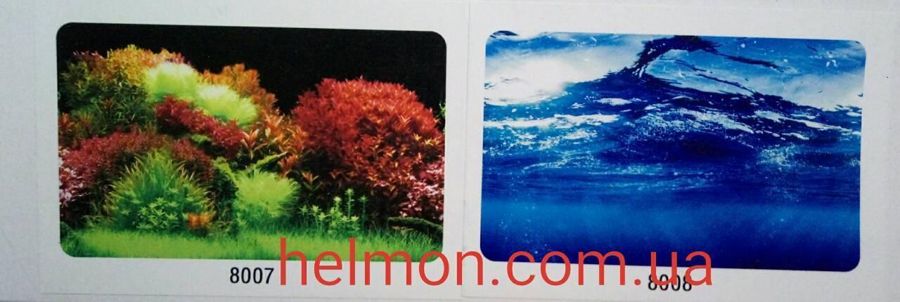 Фон для аквариума двусторонний растения/вода, высота 60 см, 8007/8008