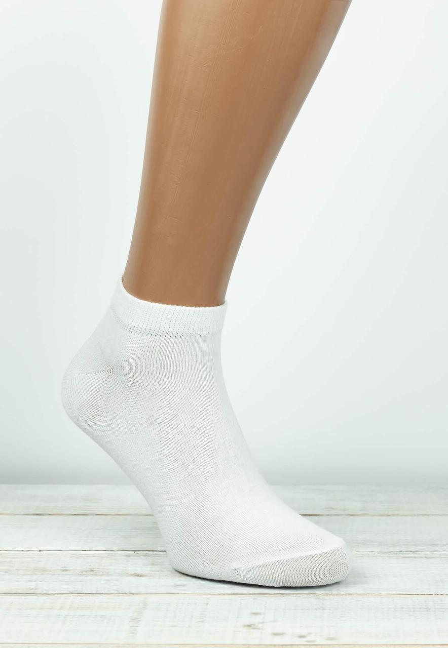 Чоловічі носки шкарпетки Montebello з бавовни однотонні  40-45 12 шт в уп білі