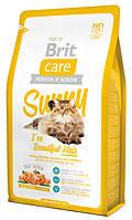 Корм для котов Brit Care Cat Sunny I have Beautiful Hair 2 кг, брит для длинношерстных кошек
