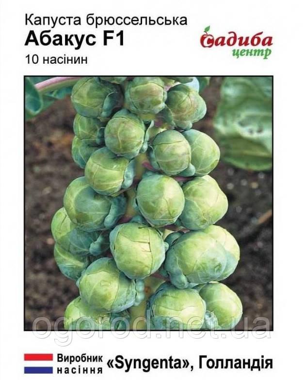 Абакус 10 шт семена брюссельской капусты Syngenta Голландия