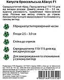 Абакус 10 шт семена брюссельской капусты Syngenta Голландия, фото 3