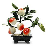 Дерево персик (5 плодов)(23х24х13 см)