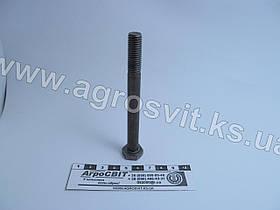 Болт М10х100 (ГОСТ 7805 4.8)