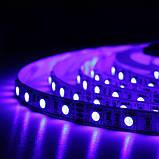 Светодиодная лента Professional 12v 5м 5050-60 IP20 RGB, фото 5