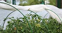 Парник Полтавский 5м  увеличенный Agreen