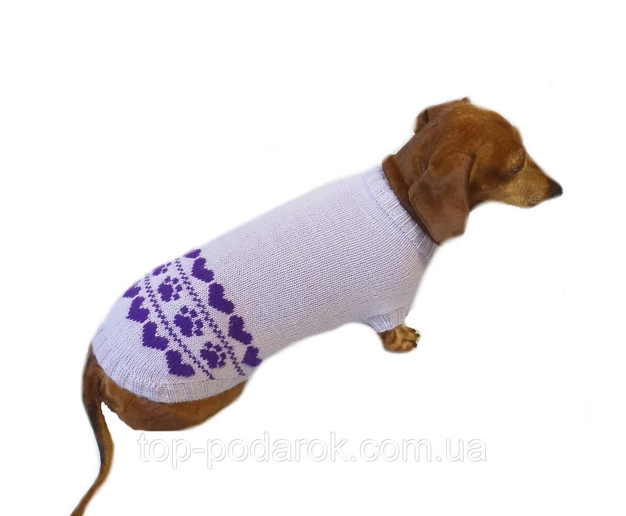 Бузковий светр для собаки лапки сердечка