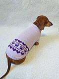 Бузковий светр для собаки лапки сердечка, фото 2