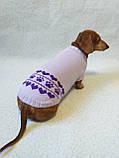 Бузковий светр для собаки лапки сердечка, фото 3
