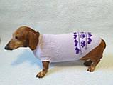 Бузковий светр для собаки лапки сердечка, фото 6