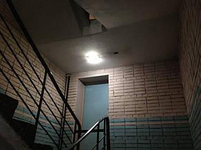 Пластиковый Led светильник ЖКХ накладной овал 20w 6000K AVT-118/1, фото 2