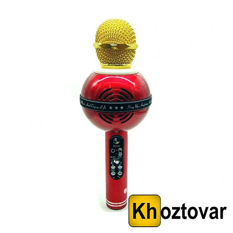 Микрофон DM Karaoke WS 878