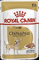 Паучи Royal Canin Chihuahua Adult 85г (в упаковці 12шт.)