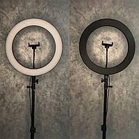 Кольцевая LED Лампа на штативе + чехол 36 см. Black Черный