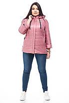 Лёгкая весенняя осенняя женская куртка большого размера размер 48-60, фото 3