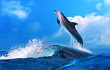 Журнальный стол Бочка Dolphin стеклянный, фото 3