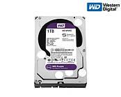 Жесткий диск Western Digital Purple 1TB 64MB WD10PURZ