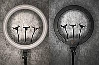 Кольцевая LED Лампа на штативе для 3 гаджетов 46 см + чехол. Black Черный