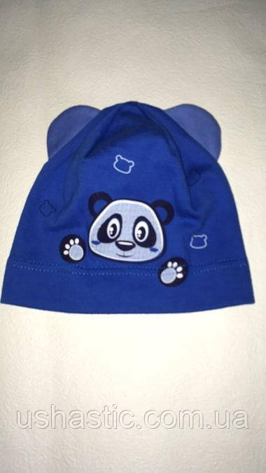 Трикотажная шапочка для мальчика на 1-2 года(хлопок)