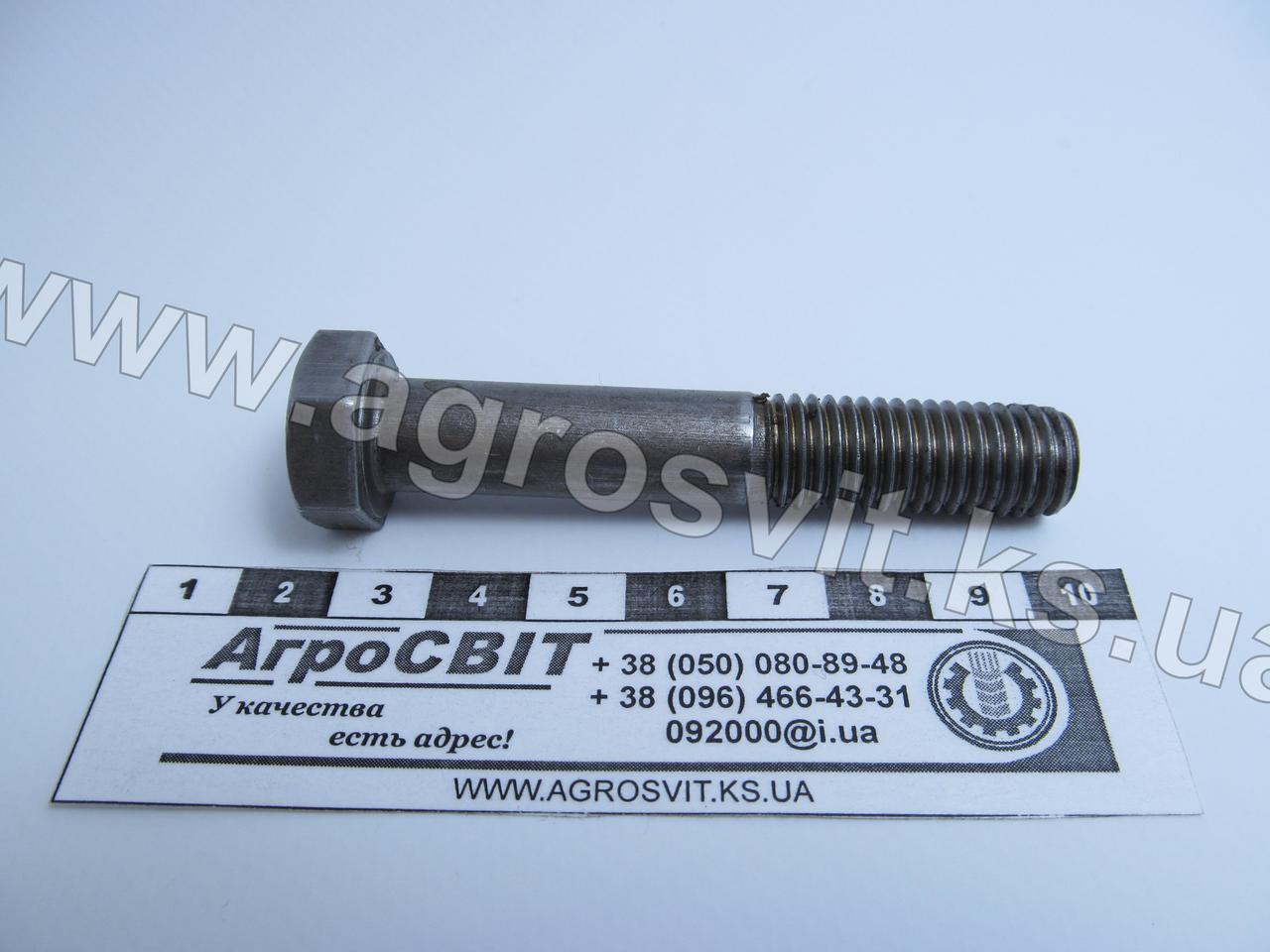 Болт М12х70 (ГОСТ 7805 4.8)
