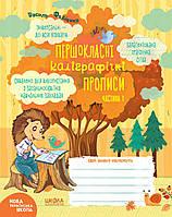 Першокласні каліграфічні прописи Частина 1 Федієнко В. Дерипаско Г.